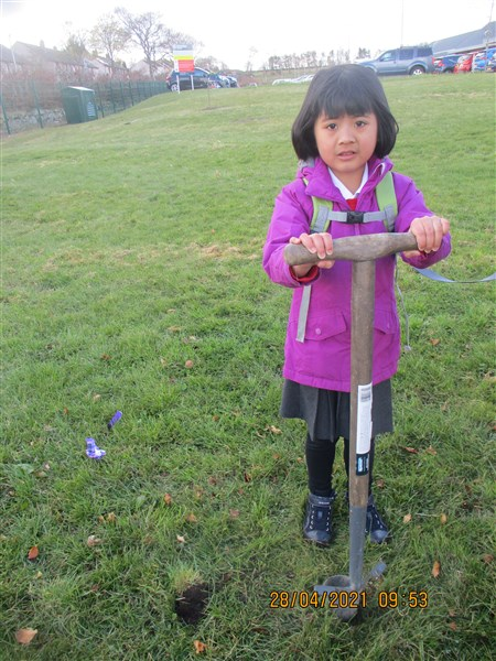 Tree Planting in Outdoor Education